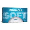 Pinnacle Soft 2020